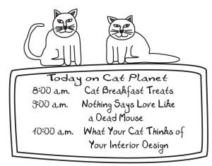 cat-planet-lineup-21